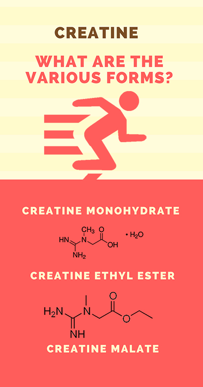 What are the forms of Creatine